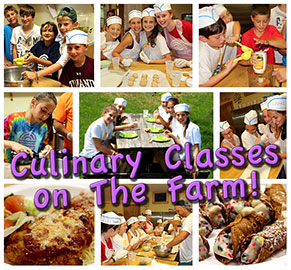 Culinary Classes